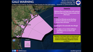 Gale Warning, Wind Advisory, and Freeze Warning in effect for portions of South Texas