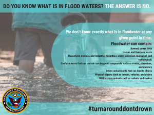 Do You Know What Is In Flood Waters
